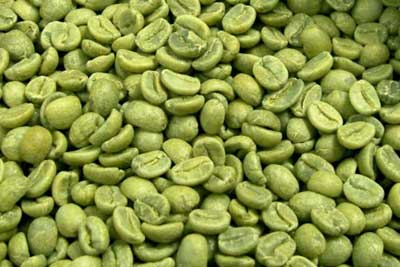 Green Coffee Garcinia Cambogia