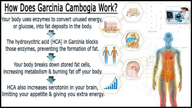 How HCA Works