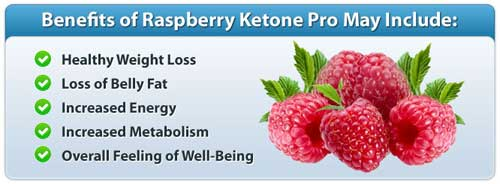 Raspberry Ketone Benefits