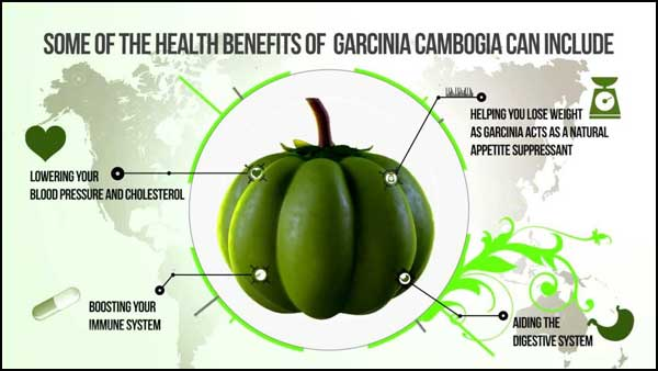 Garcinia Health Benefits